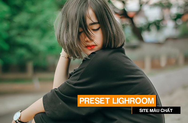 preset lightroom style mau chat 1